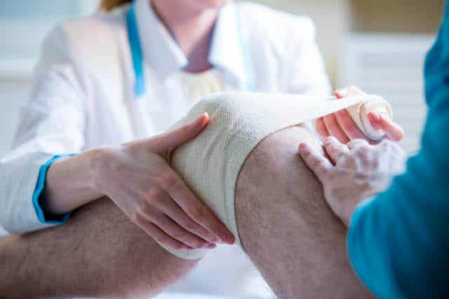 """Desarrollan un """"vendaje vivo"""" de células madre para tratar las lesiones de rodilla"""