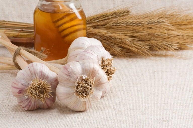Los increíbles beneficios del ajo con miel en ayunas