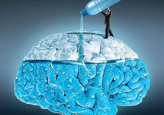 beneficios del agua para el cerebro