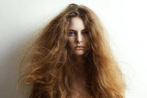 5 ingredientes naturales para tratar el cabello seco