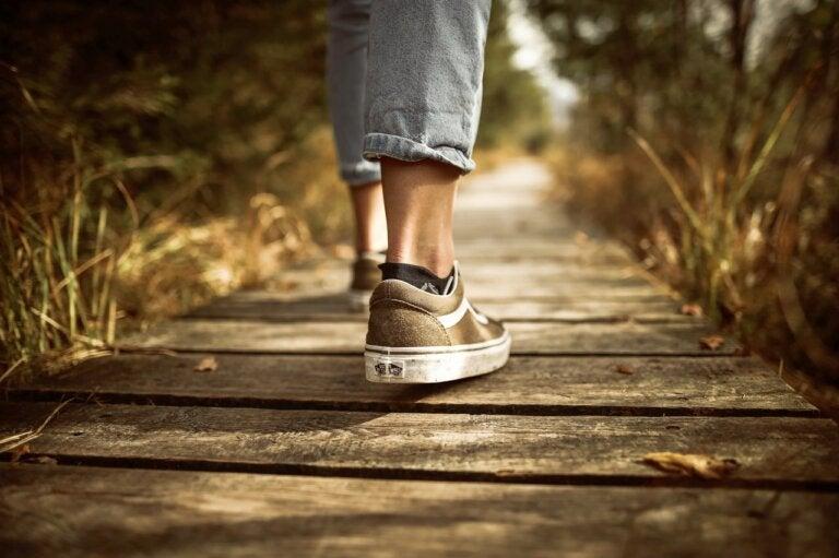 Caminando en línea recta no llegarás más lejos