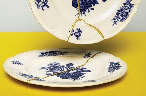 Broken ceramic plates.