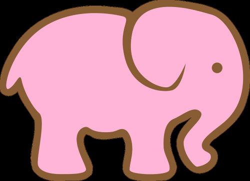 elefante rosa insomnio
