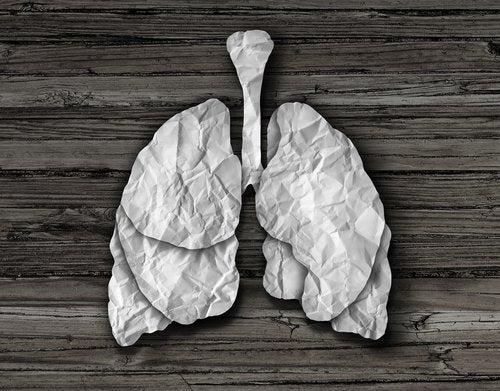 Remedios naturales para limpiar los pulmones