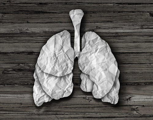 limpiar los pulmones