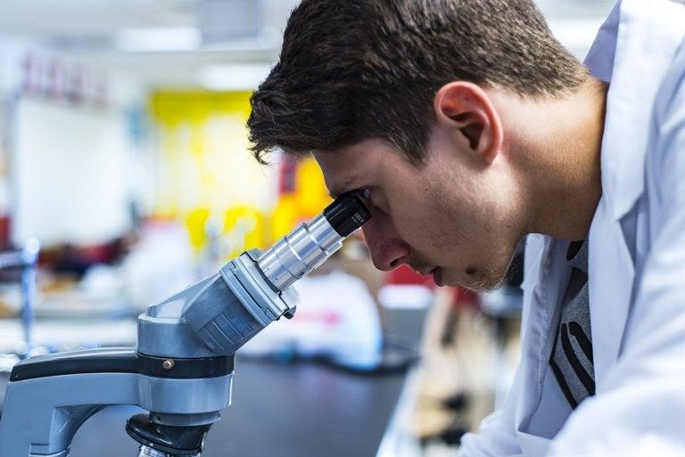 Nanoimanes para limpiar la sangre y sustituir a los antibióticos