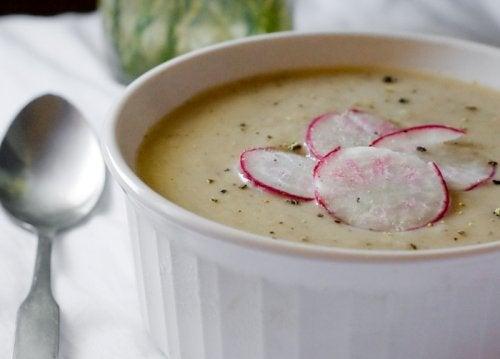 sopa-rabano