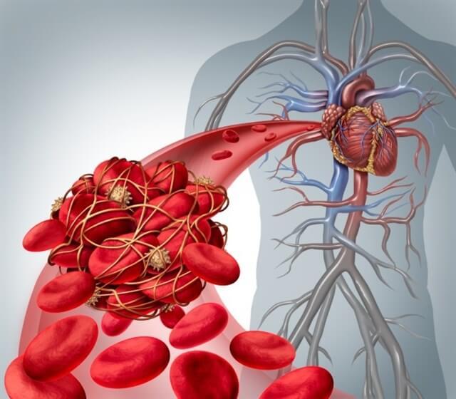 Imagen de vaso sanguíneo con globulos rojos