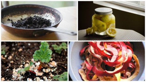 6 innovadoras formas de utilizar los residuos de tus alimentos