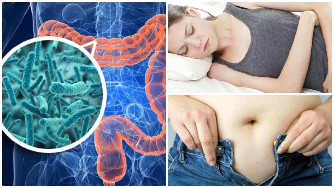 síntomas que te aquejan por el sobrecrecimiento bacteriano en el intestino