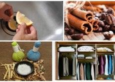 8 trucos para eliminar los malos olores en lugares cerrados