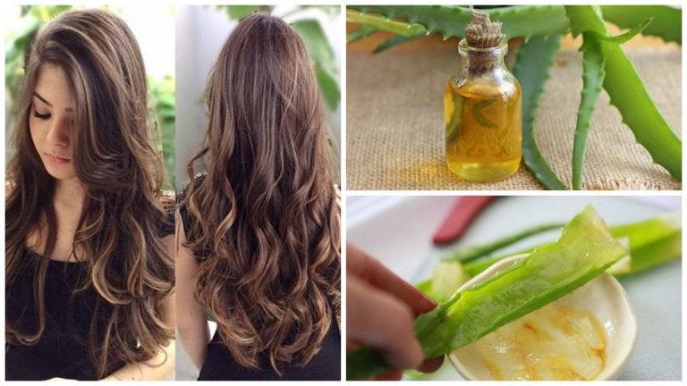 Acelera el crecimiento de tu cabello con este tratamiento de aloe vera y aceite de argán