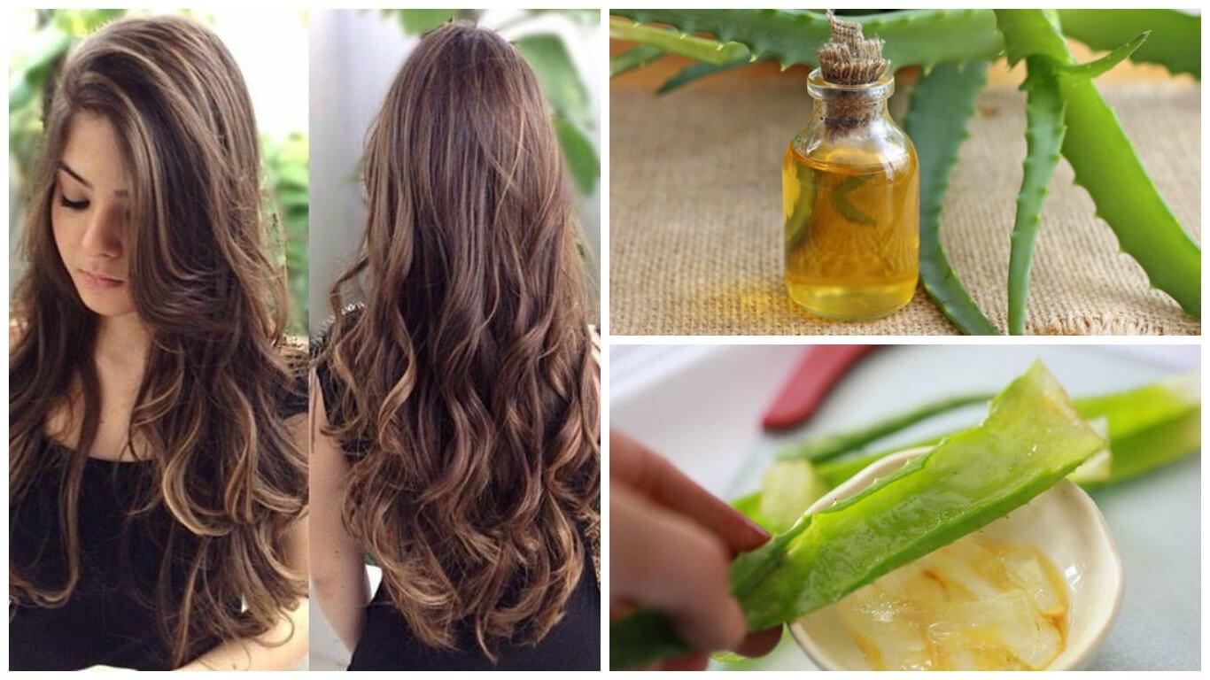 Acelera el crecimiento de tu cabello con este tratamiento de aloe vera y  aceite de argán 8e9ec2fee1b7