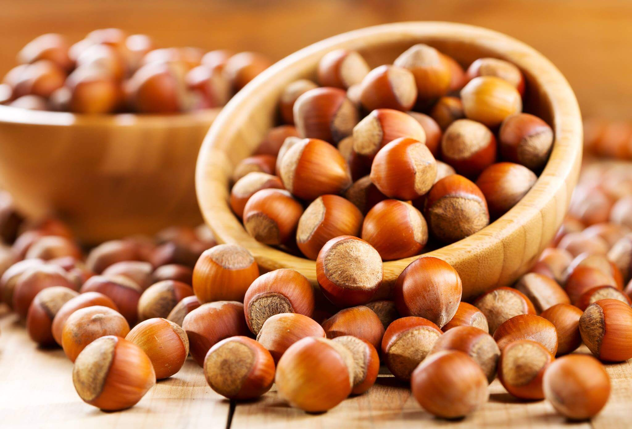 Hazelnuts to lose weight.