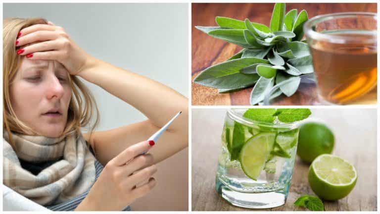 Las 6 mejores soluciones naturales para bajar la fiebre