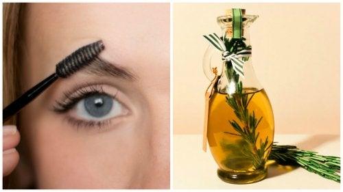 Los 6 mejores aceites para aumentar el grosor de las cejas