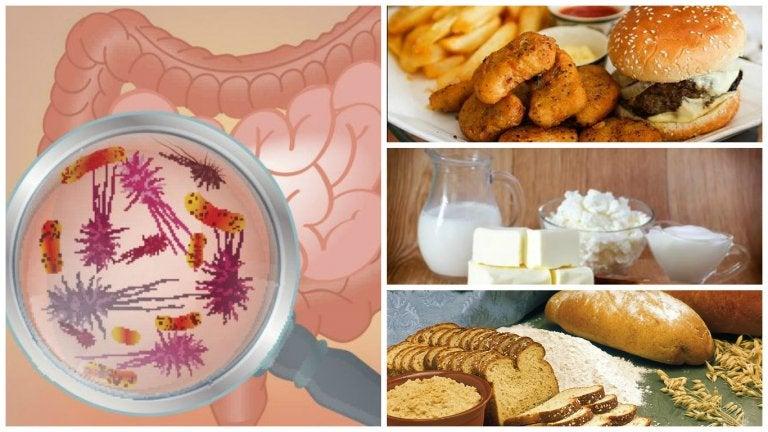 Los 7 alimentos que afectan tu salud intestinal