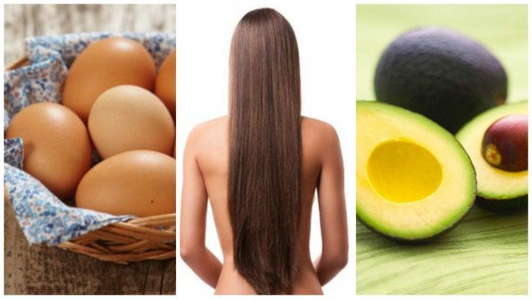 ¿Quieres acelerar el crecimiento de tu cabello? Incluye en tu dieta estos 8 alimentos