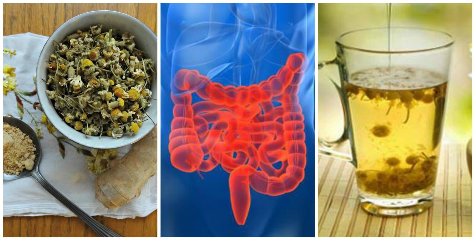 el te de jengibre da diarrea