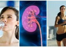 Te preocupa tu salud renal Atiende estas 7 recomendaciones