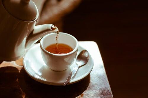 ¿Conocías el té de damiana? ¡Estas son algunas de sus increíbles propiedades!