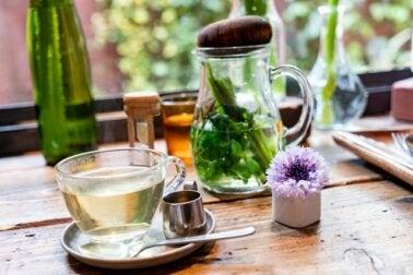 Alimentos y remedios para fortalecer el sistema inmunitario