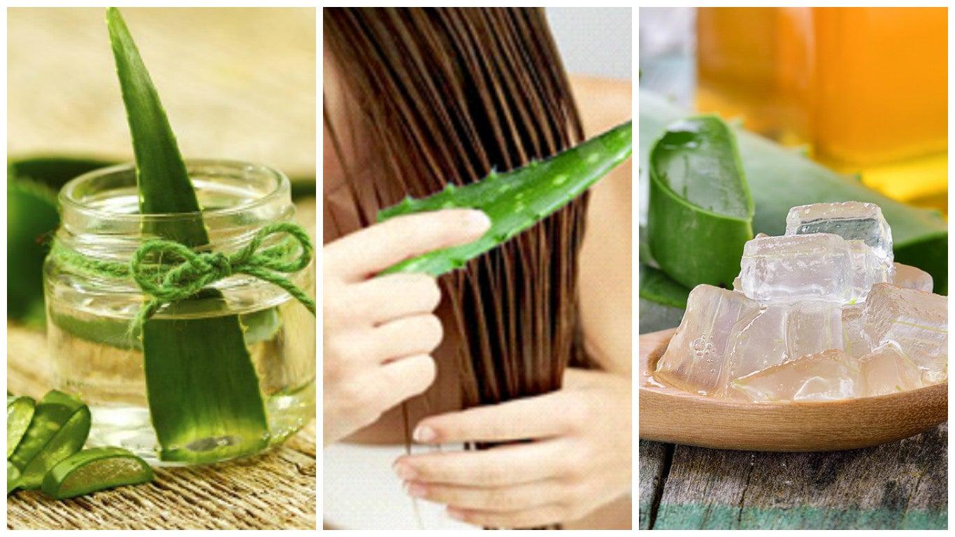 5 tratamientos con aloe vera para fortalecer el cabello
