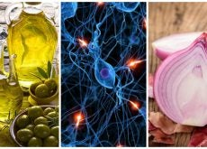 8 alimentos que debes ingerir para tener un cerebro sano
