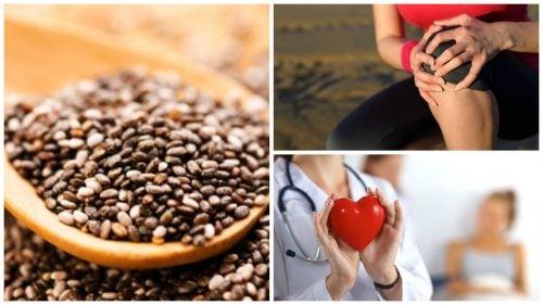 9 beneficios que obtienes cuando consumes semillas de chía