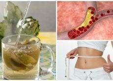 Combate el colesterol y pierde peso con esta bebida de alcachofa y pomelo