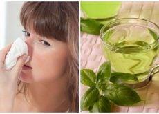 Combate la congestión nasal con estos 5 remedios naturales