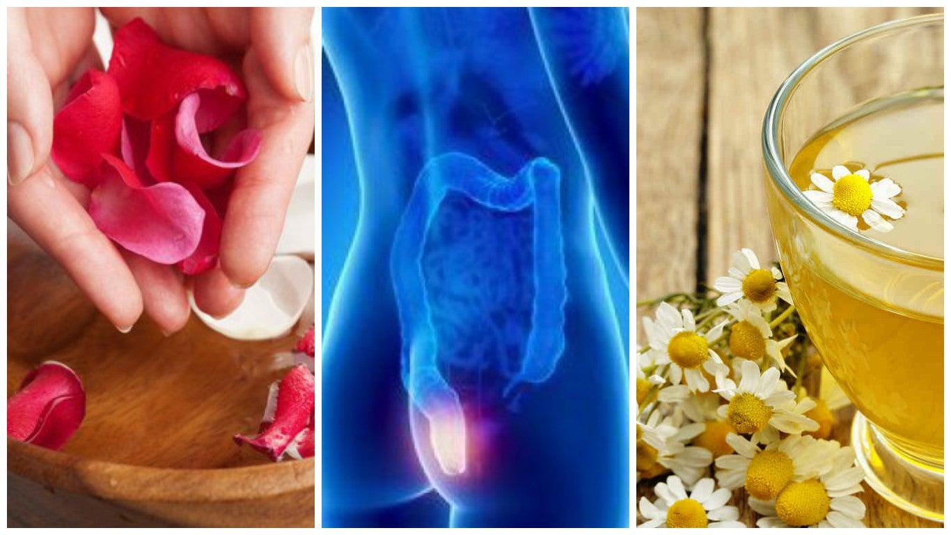 Ungüento de manzanilla y pétalos de rosa para curar las hemorroides