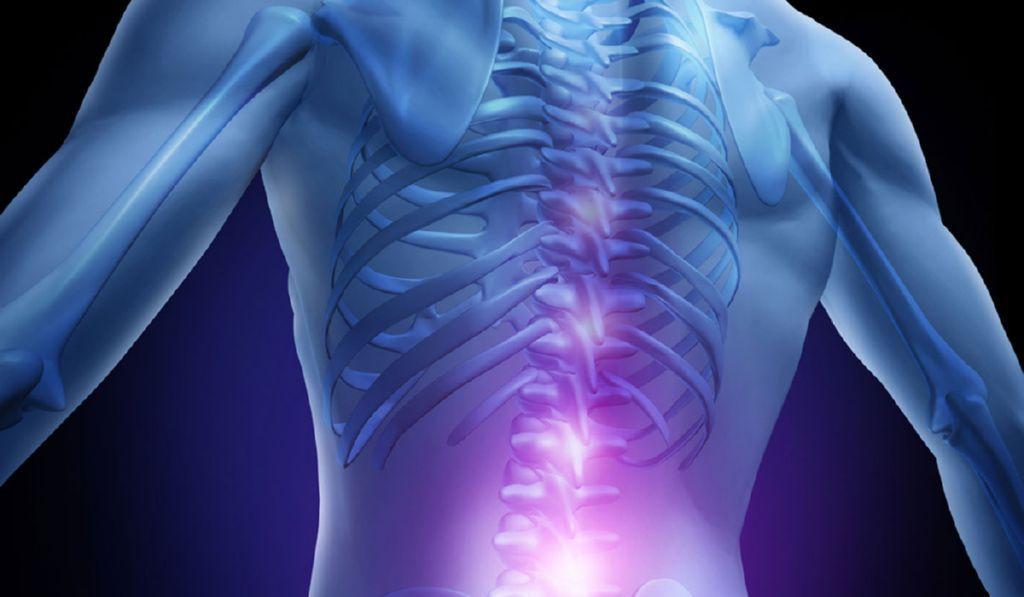 médula espinal y mielitis transversa