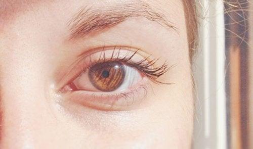 Color de ojos marrón