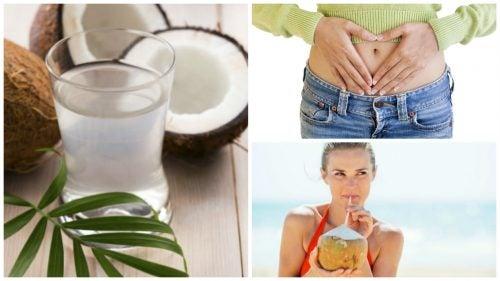 10 beneficios que obtienes por consumir agua de coco regularmente