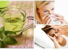 8 beneficios que obtienes por ingerir té de albahaca todos los días