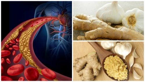 jengibre en próstata y problemas vasculares
