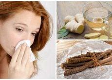 Combate la rinitis de forma eficaz con estos 6 remedios naturales