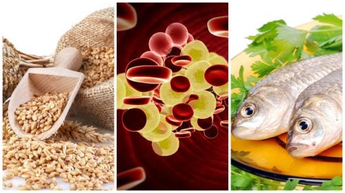 Ejemplo de dieta para hipercolesterolemia