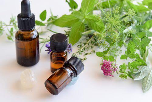 Plantas y frascos de aceites esenciales