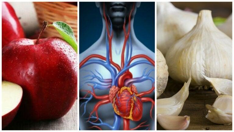 7 alimentos que puedes consumir para mejorar tu circulación