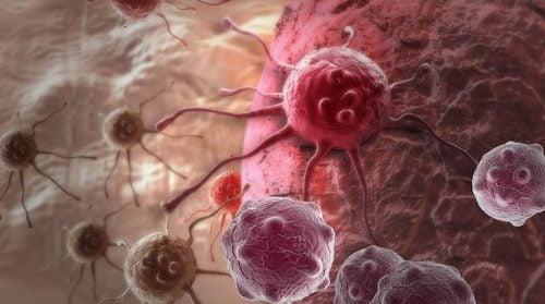 El origen del cáncer: de la célula normal a la célula maligna