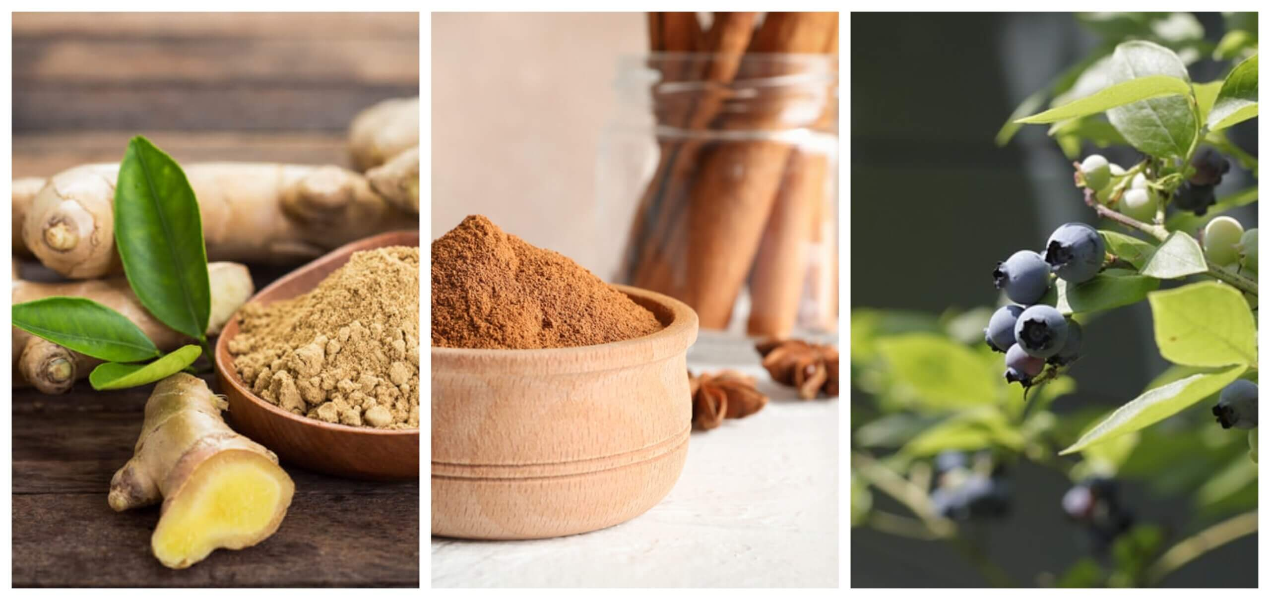 7 hierbas que te ayudan a tratar la diabetes de tipo 2