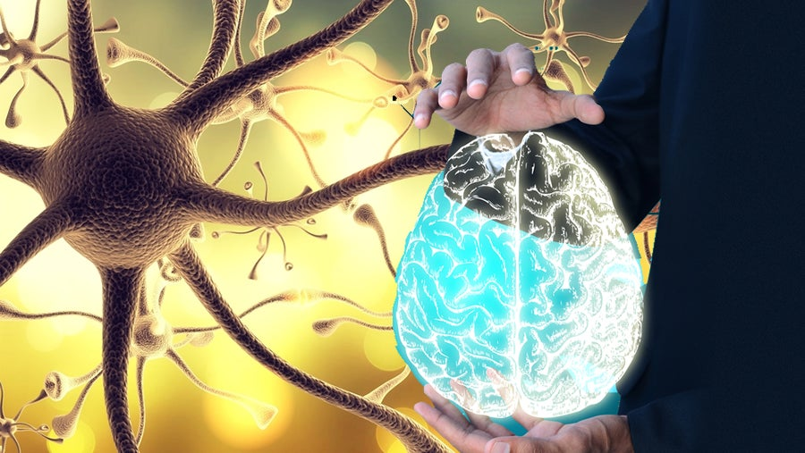 Cómo «despertar» el nervio vago para disfrutar de un bienestar integral