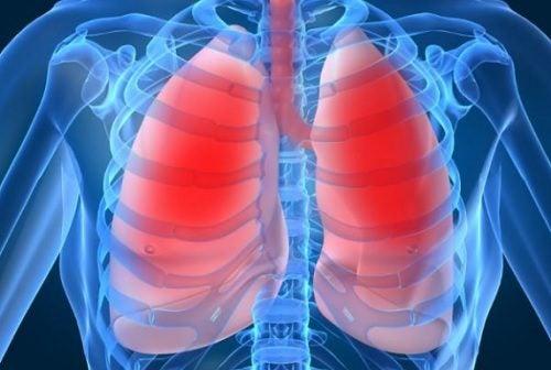 De al dolor respirar pulmones