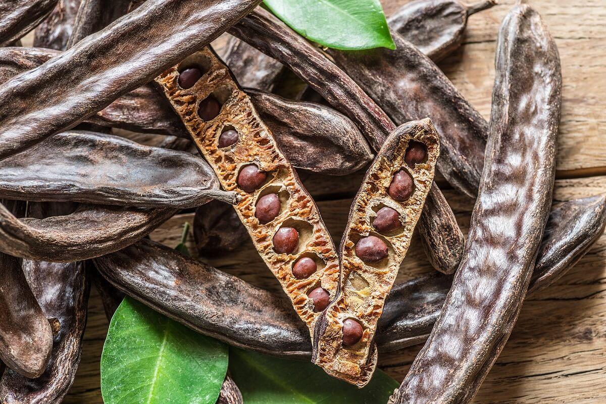La algarroba: ¿el reemplazo natural del chocolate?