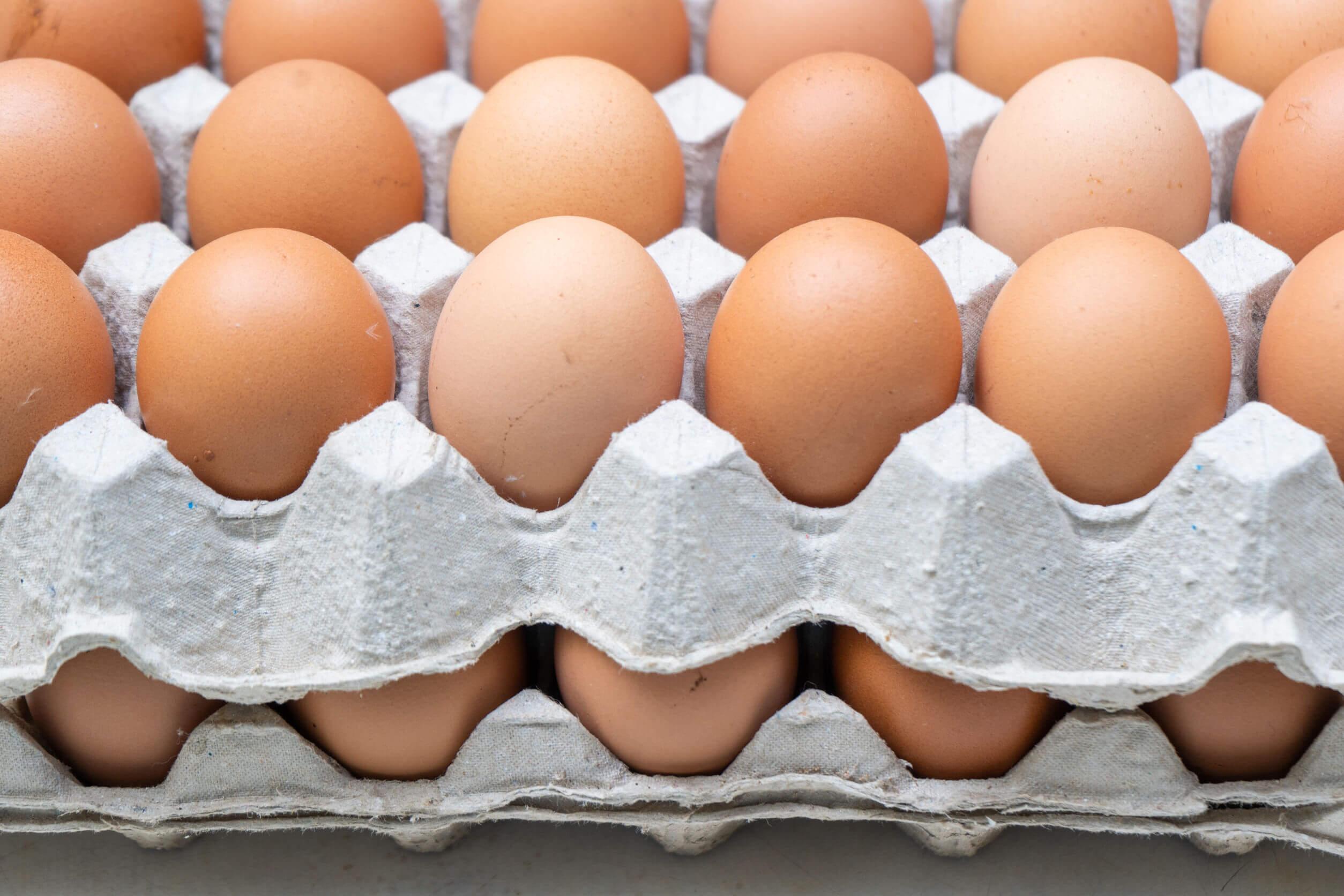 Al dejar de comer carne se pueden comer huevos.