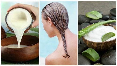 Combate la caída del cabello con este tratamiento de aloe vera y leche de coco