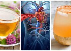 Protege tu corazón consumiendo estos 5 tónicos naturales