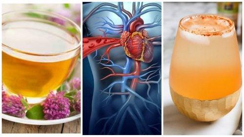 Protege tu corazón con estos 5 tónicos naturales